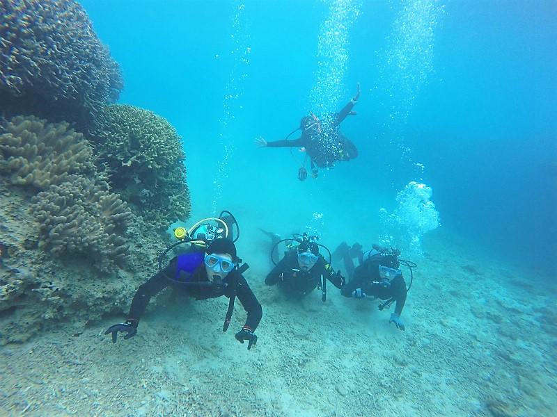 沖縄 本島 崎本部 ゴリラチョップ ダイビング ビーチダイビング 体験ダイビング