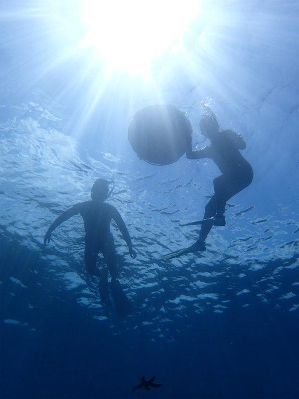 沖縄 北谷 砂辺 ダイビング