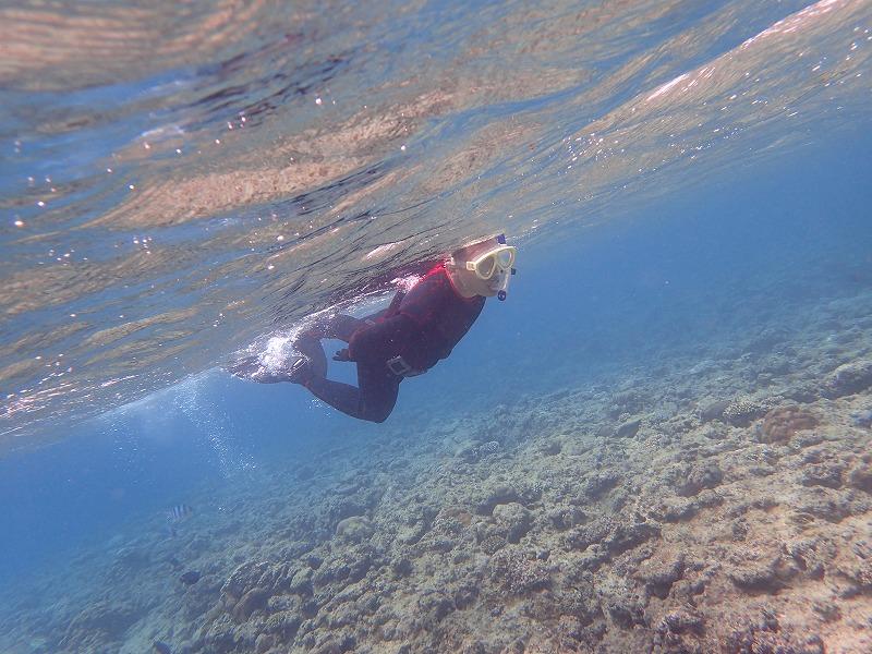沖縄 ダイビング PADI OWD講習 ライセンス講習
