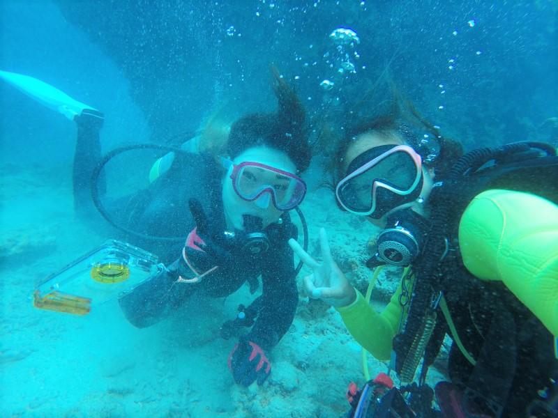沖縄 北部 本部 ゴリラチョップ ダイビング ビーチダイビング