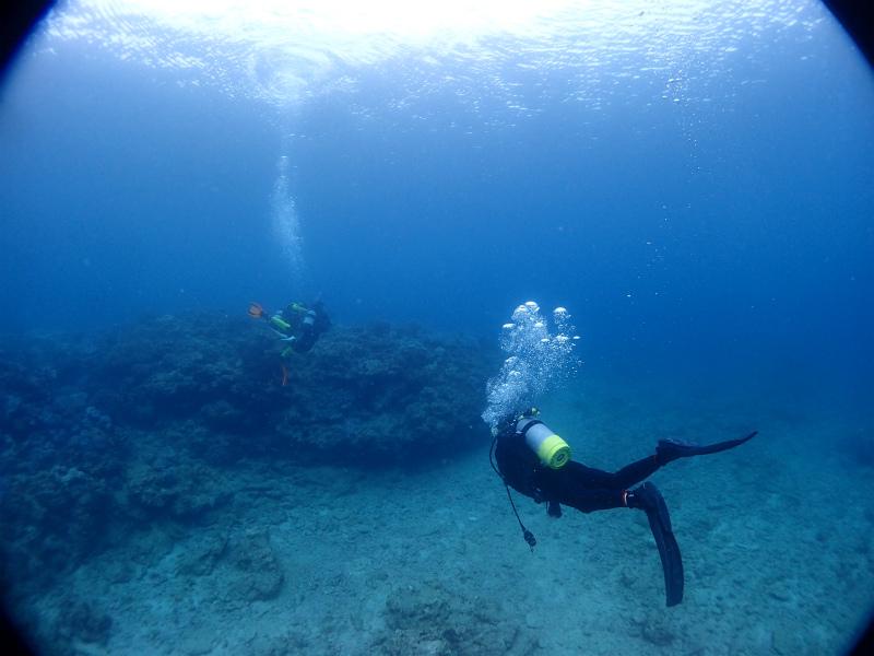 沖縄 北谷 砂辺 宮城海岸 ダイビング ビーチダイビング