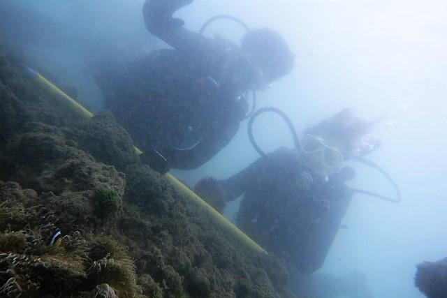 沖縄 沖縄本島 波の上 那覇シーサイドパーク ダイビング ビーチダイビング 体験ダイビング 那覇