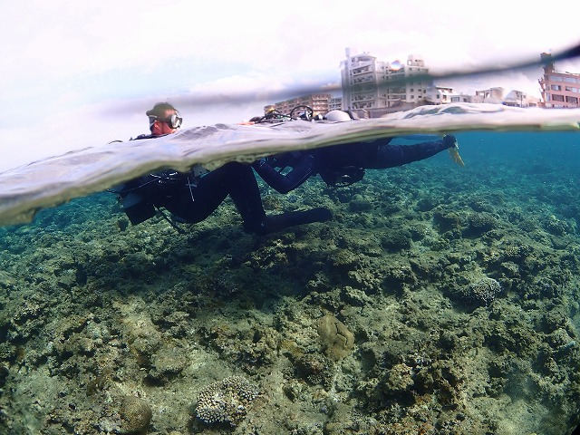 沖縄 体験ダイビング 半水面