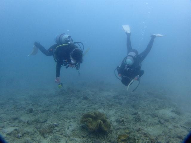 沖縄 ダイビング 宜野湾 AOW講習