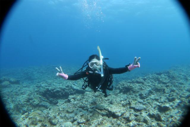 沖縄 チービシ ナガンヌ ダイビング ボートダイビング