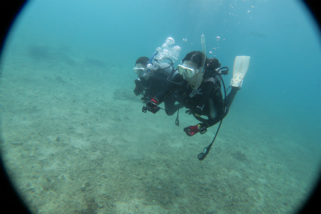 沖縄 ダイビング AOW講習 体験ダイビング