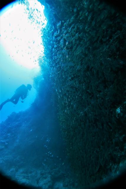 沖縄 沖縄本島 南部 糸満 ダイビング ボートダイビング ファンダイビング