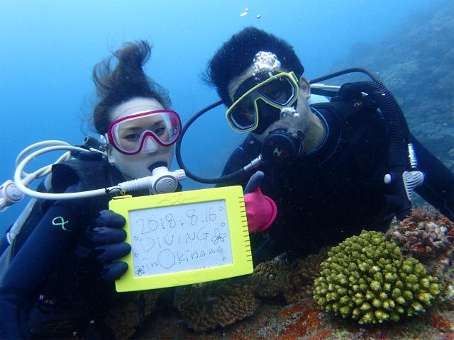 沖縄 ダイビング 宜野湾 体験ダイビング FUNダイビング ライセンス講習