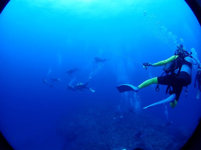 沖縄 慶良間 慶良間諸島 ダイビング ボートダイビング ドリフトダイビング 自社船