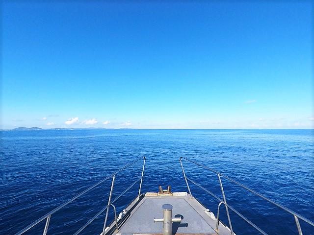 ウミガメ 沖縄 慶良間 慶良間諸島 ダイビング ボートダイビング