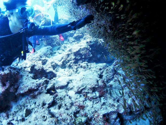沖縄 チービシ ナガンヌ 神山 ダイビング ボートダイビング ファンダイビング