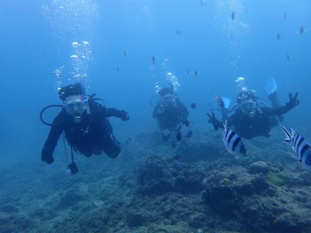 沖縄 沖縄本島 ダイビング PADI OW 講習