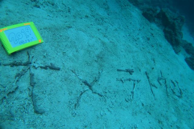 沖縄 沖縄本島 チービシ諸島 ナガンヌ島 ダイビング ボートダイビング 自社船