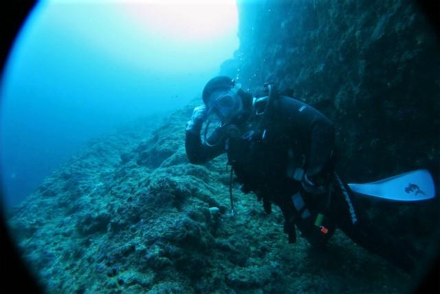 沖縄 沖縄本島 西海岸 恩納村 万座 瀬良垣 ダイビング ボートダイビング  ファンダイビング