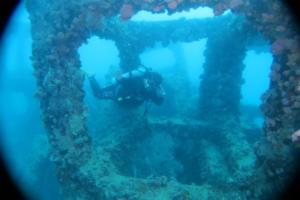 沖縄ダイビング 与那原マリーナ アルファダイブ 漁猟
