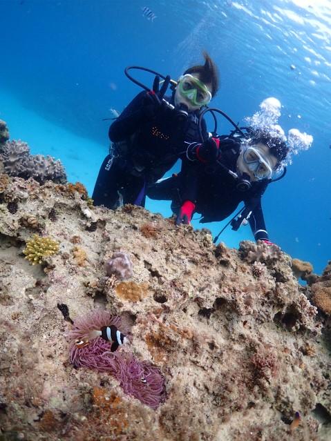 沖縄ダイビング ビーチ ゴリラチョップ 体験ダイビング