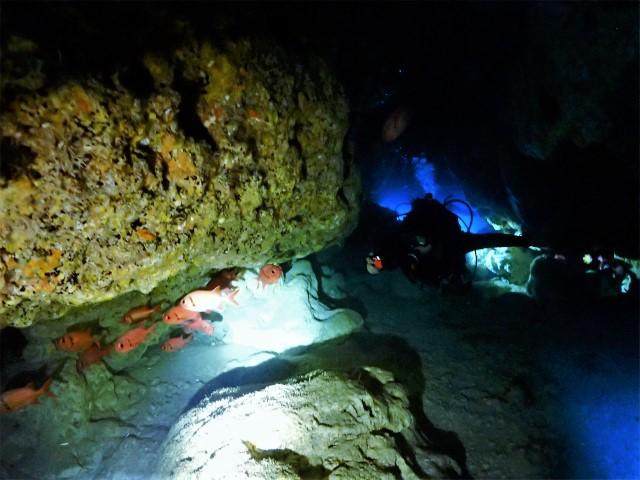 沖縄 チービシ諸島 ナガンヌ島 神山島 ダイビング ボートダイビング