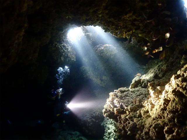 砂辺ダイビング 秘密の穴