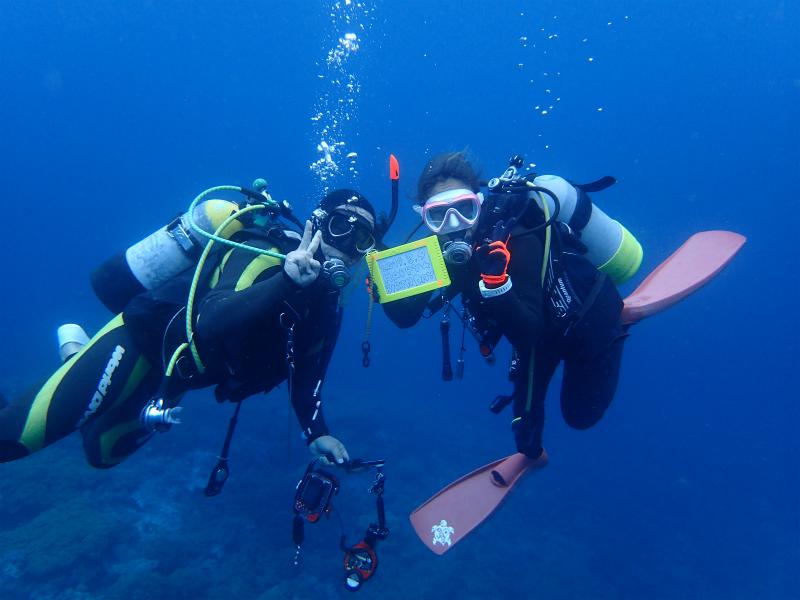 沖縄 沖縄本島 北谷 砂辺 ダイビング ボートダイビング 自社船