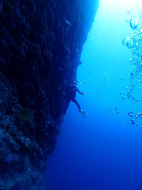 沖縄 沖縄本島 恩納村 万座 瀬良垣 ボートダイビング ダイビング