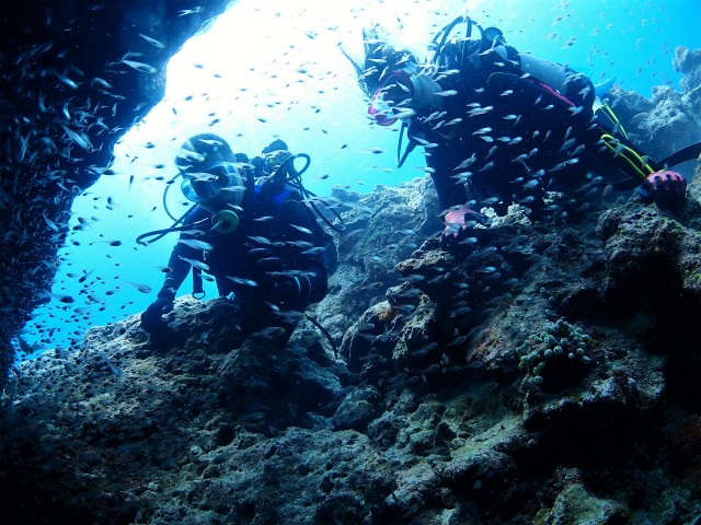 沖縄 チービシ諸島 ナガンヌ島 ダイビング 体験ダイビング 自社船