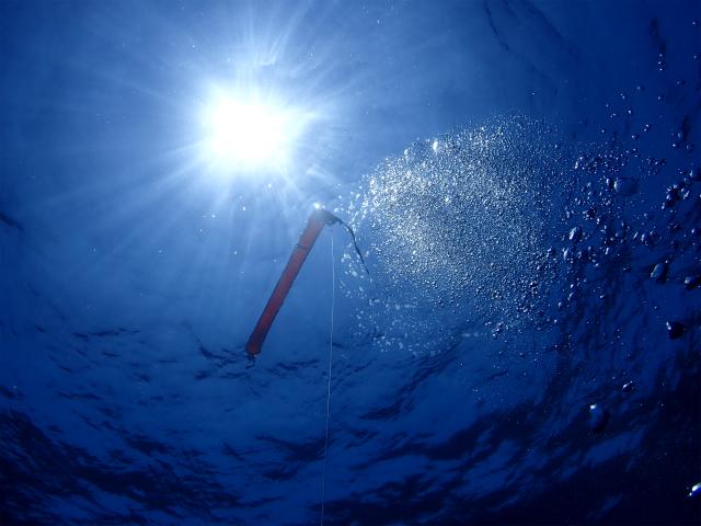 沖縄 粟国 筆ん崎 ダイビング ボートダイビング ファンダイビング 遠征 ドリフト