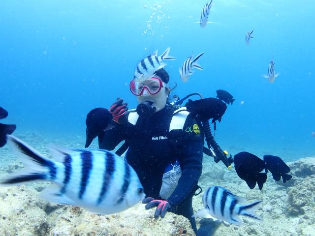 沖縄 ダイビング 体験ダイビング 砂辺