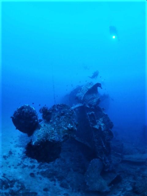 沖縄 沖縄本島 エモンズ 沈没船 沈船 ダイビング ファンダイビング ボートダイビング