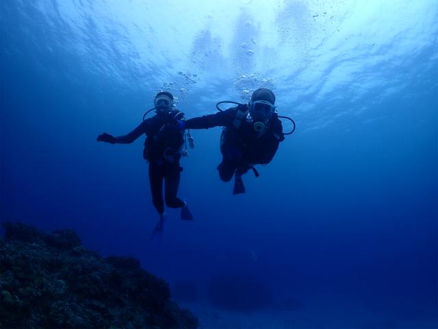 慶良間 沖縄 ダイビング 体験ダイビング