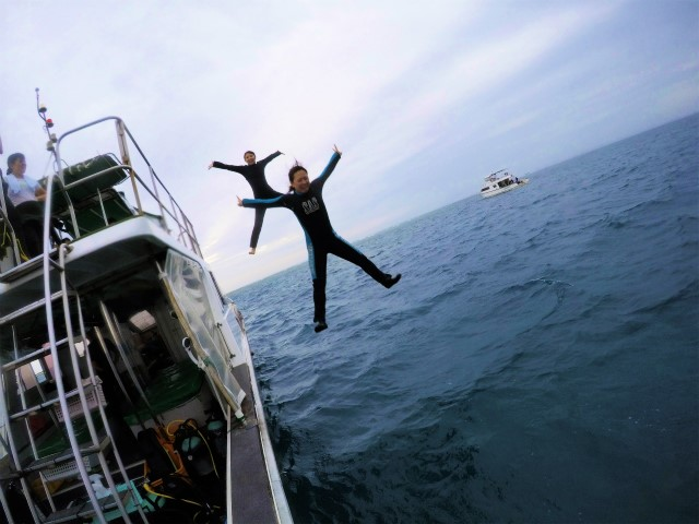 沖縄 沖縄本島 チービシ 神山島 ダイビング ボートダイビング 自社船