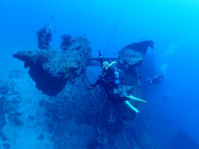 沖縄 慶良間 慶良間諸島 ダイビング 体験ダイビング沖縄 慶良間 慶良間諸島 ダイビング 体験ダイビング