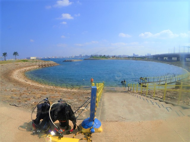 沖縄 体験ダイビング 那覇
