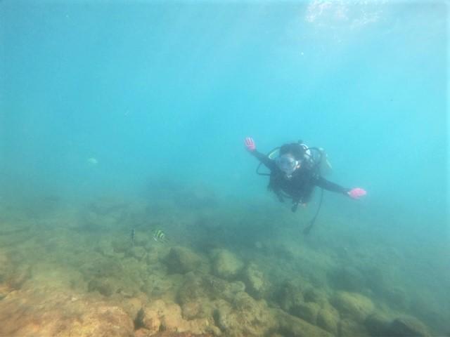 沖縄 那覇 うみそら公園 波の上 ダイビング ファンダイビング ビーチダイビング