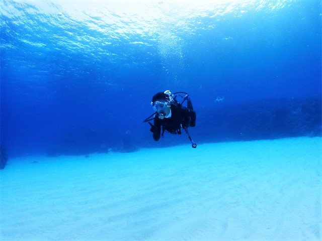 沖縄 ダイビング 慶良間 FUNダイビング 体験ダイビング 自社船