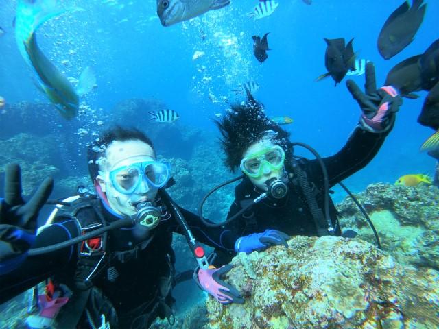沖縄 真栄田岬 青の洞窟 ビーチダイビング ダイビング 体験ダイビング