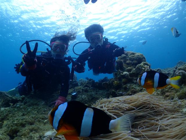沖縄 ダイビング 北部 体験