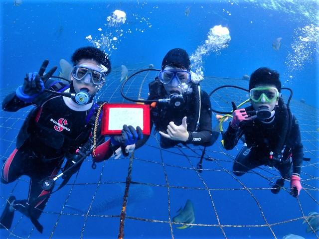 沖縄 沖縄本島 読谷村 ジンベエ ジンベイ ボートダイビング 体験ダイビング