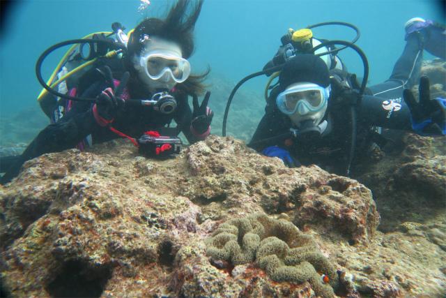 沖縄 ダイビング 体験ダイビング