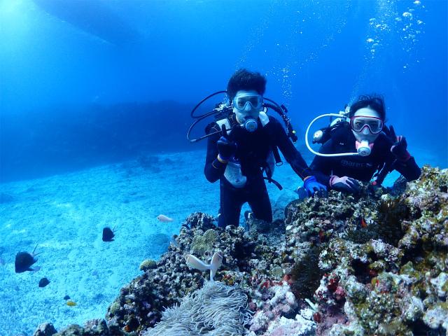 沖縄 ダイビング 慶良間 体験ダイビング FUNダイビング ライセンス