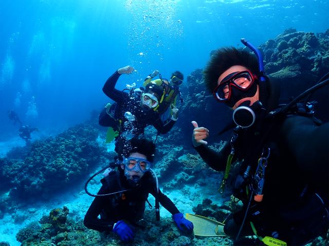 沖縄 北部 水納島 ダイビング
