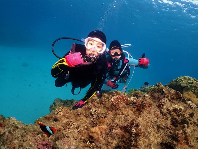 沖縄 ダイビング ビーチ 体験ダイビング