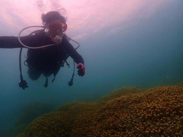 沖縄 那覇ビーチ 体験ダイビング