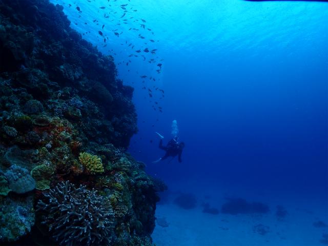 海 沖縄 景色