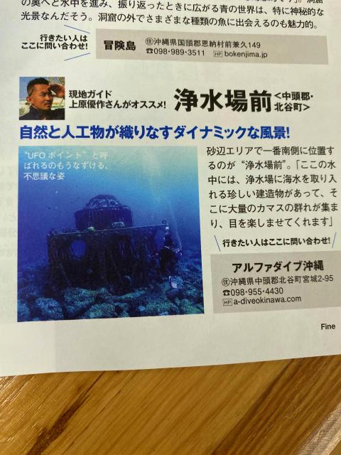 沖縄 ベータ号 ダイビング