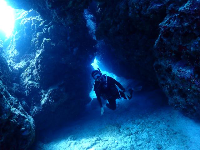 海 沖縄 ダイビング
