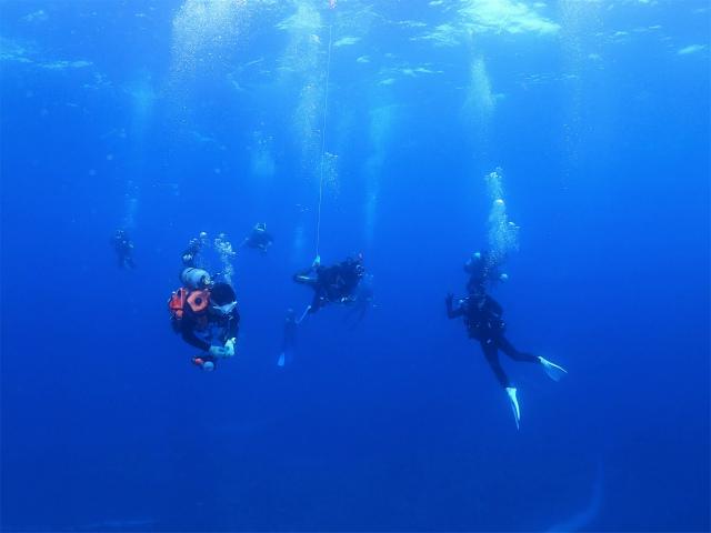沖縄 ダイビング 渡名喜 FUNダイビング ドリフトダイビング