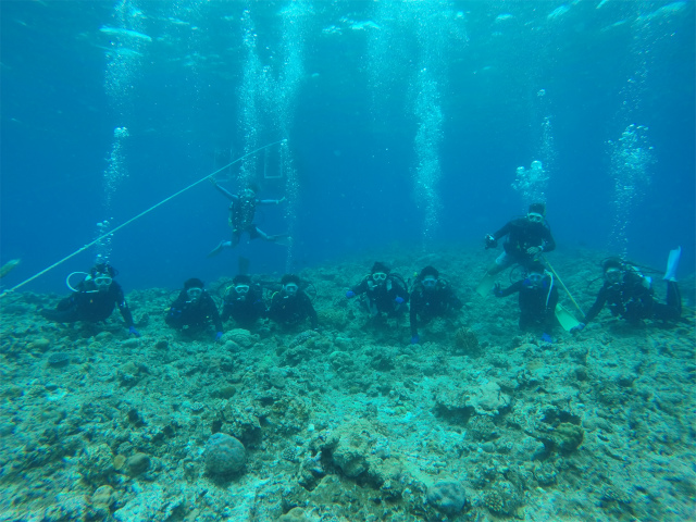 海 沖縄 ダイビング 観光