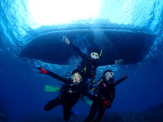 沖縄 ダイビング 体験ダイビング 慶良間 ウミガメ