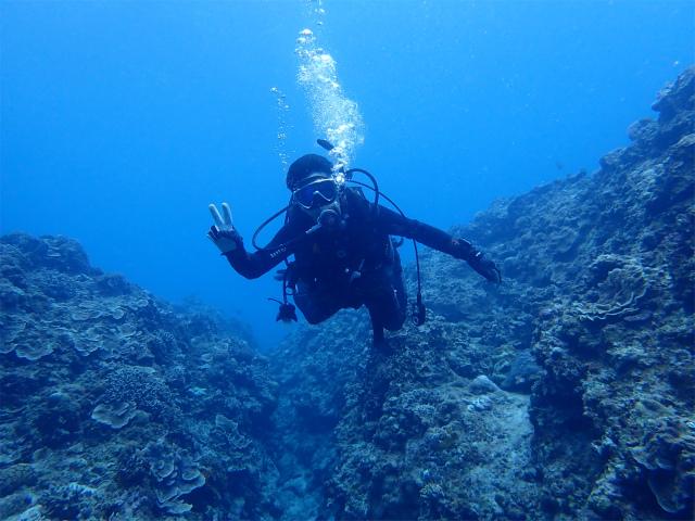 海 慶良間 沖縄 景色