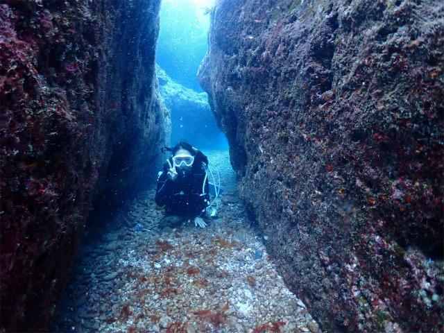 海 ダイビング 景色 沖縄